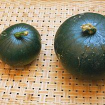 Кабачок «Заппо» — в пищу лучше употреблять маленькие плоды слева
