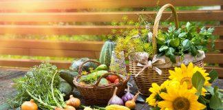 Лунный календарь садовых и огородных работ на 2021 год