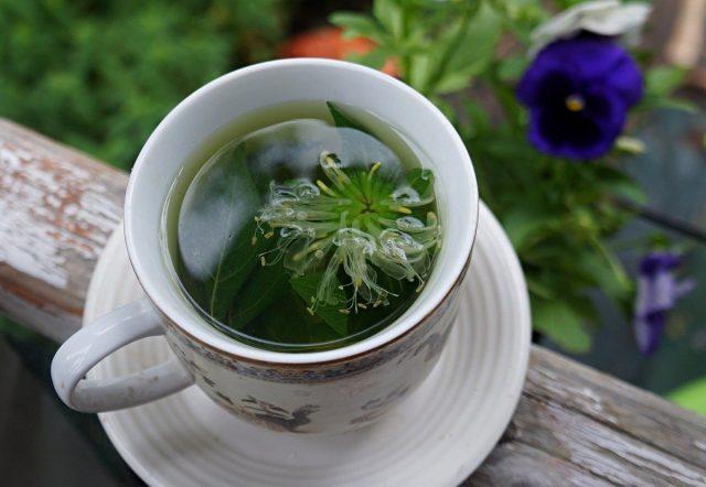 Чай из монарды вкусный, полезный и красивый