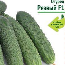 Грядка Здоровья — полезные овощи от компании «Поиск»