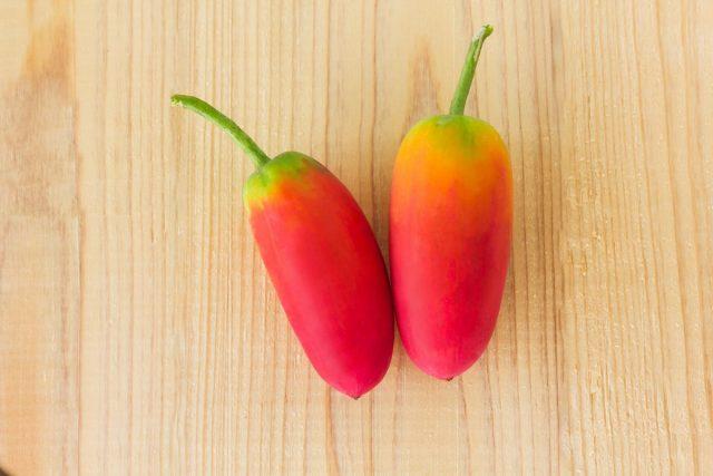 Плющевидная тыква, или Кокциния — яркий экзот для огорода и цветника