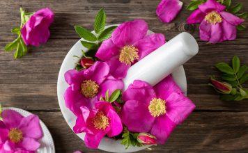 16 растений, цветки которых и красивы, и вкусны