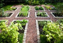 Декоративный огород: идеи для вдохновения и полезные советы