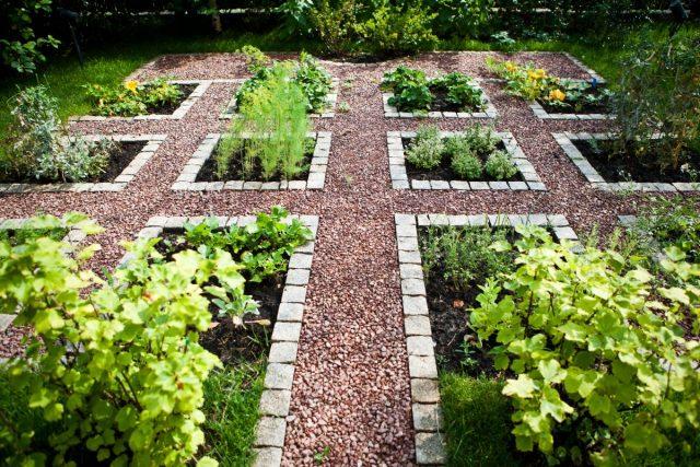 Декоративный огород — идеи для вдохновения и полезные советы