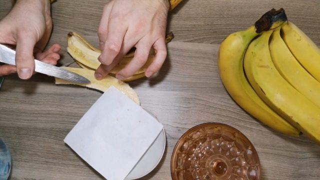 Подготавливаем семена из покупного банана