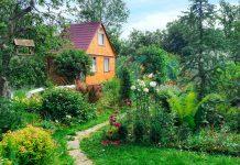 Сад в английском стиле — пасторальная идиллия своими руками