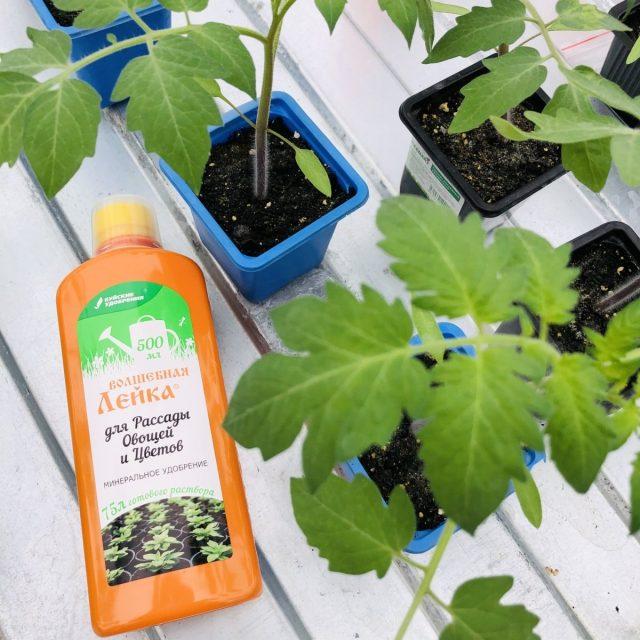 Удобрение «Волшебная лейка для рассады овощей и цветов»