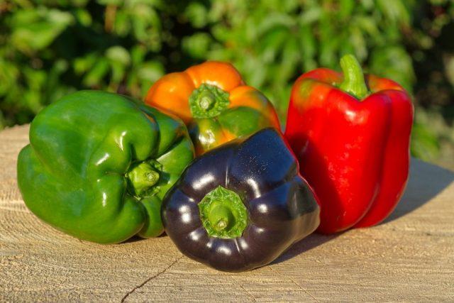 Плоды у перца могут иметь красный, кремовый, жёлтый, оранжевый и шоколадный или фиолетовый цвета