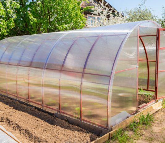 Подготовка теплицы для посевов и посадок