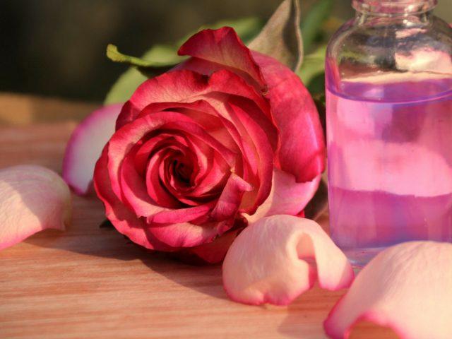Позаботимся о себе — уход за руками, лицом и волосами садовода