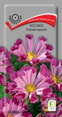 Цветник без хлопот