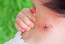 Как избавить детей от комаров и зуда после укусов?