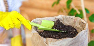 Какой бывает субстрат для комнатных растений и из чего он состоит?