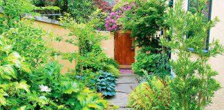 Как обустроить дизайн узкого бокового двора?