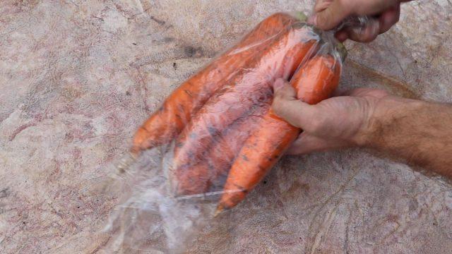 Укутывание моркови в пакеты и плёнку