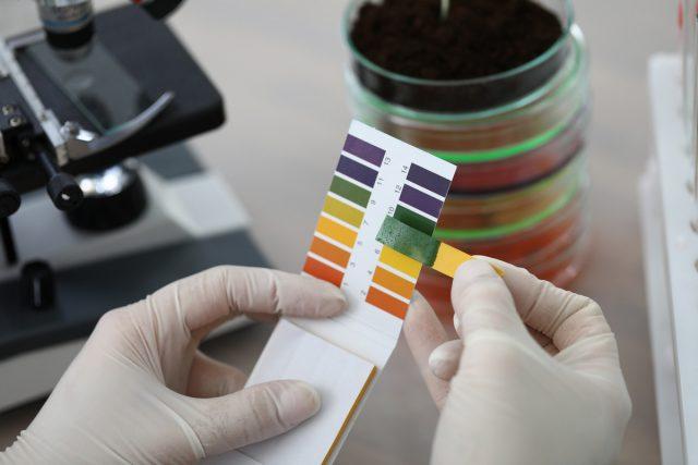 Если вы хотите получить максимально точные данные PH почвы, можете обратиться в лабораторию