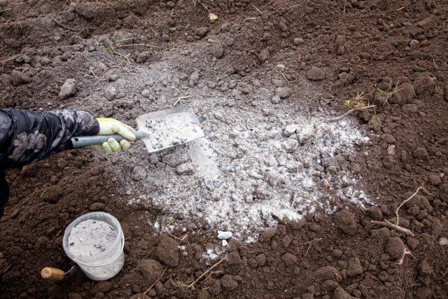 Поддержание правильного уровня pH для почвы — это постоянная задача