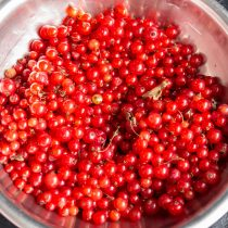 Перебираем красную смородину
