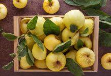 Почему яблоки ржавые?